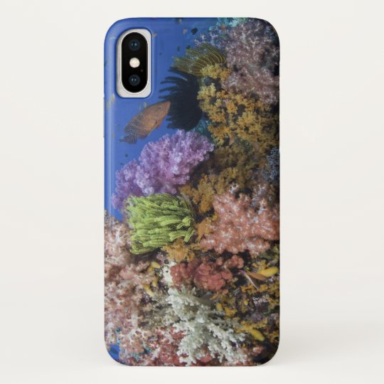 Coral reef, uderwater view blackberry bold cover