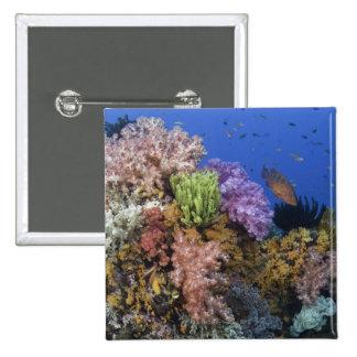 Coral reef, uderwater view pinback button