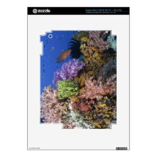 Coral reef, uderwater view iPad 3 skin