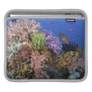 Coral reef, uderwater view iPad sleeves