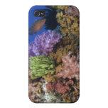 Coral reef, uderwater view iPhone 4 cover