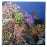 Coral reef, uderwater view large square tile