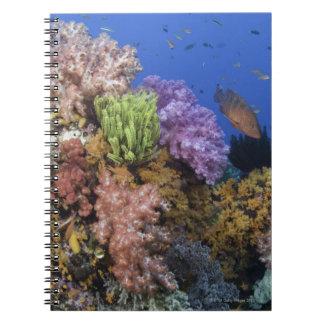Coral reef, uderwater view notebook