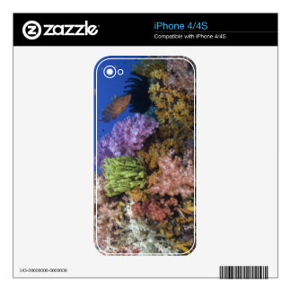 Coral reef, uderwater view skins for the iPhone 4S