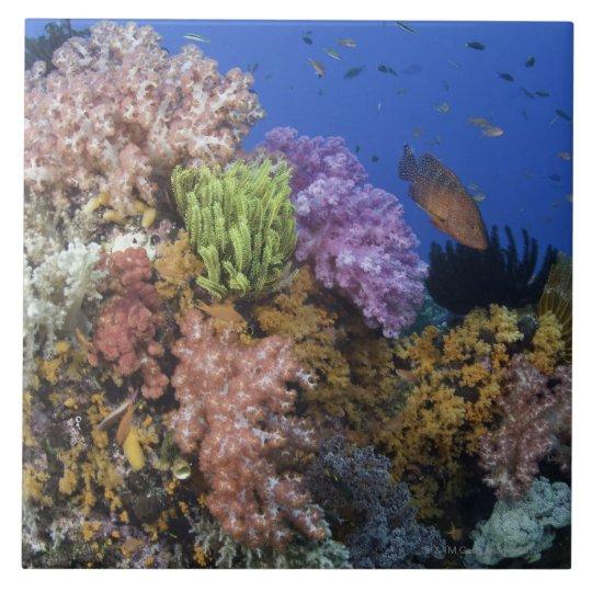 Coral reef, uderwater view tile