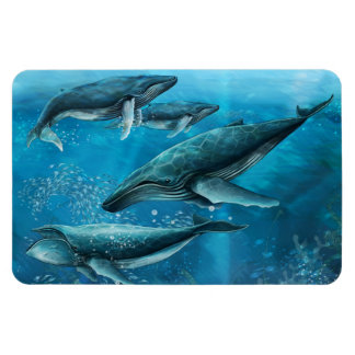 Coral Reef Whales Flexi Magnet