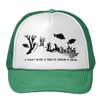 Coral Reef with Fish Swimming Hats