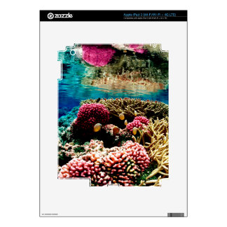 CORAL REEFS 1 SKIN FOR iPad 3
