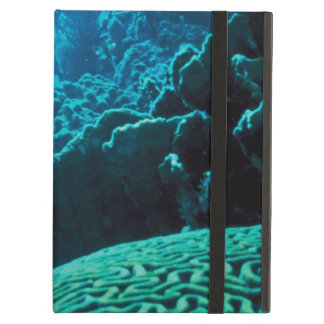 CORAL REEFS 2 COVER FOR iPad AIR