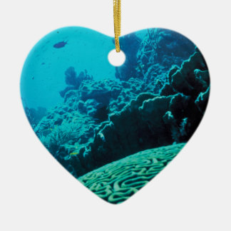 CORAL REEFS 2 ORNAMENTS