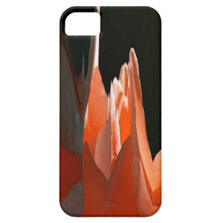 Coral Rose Abstract iPhone 5 Cover