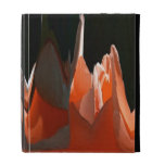 Coral Rose Abstract iPad Folio Cases