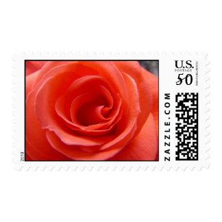 Coral Rose Postage