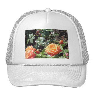 Coral Roses Trucker Hat