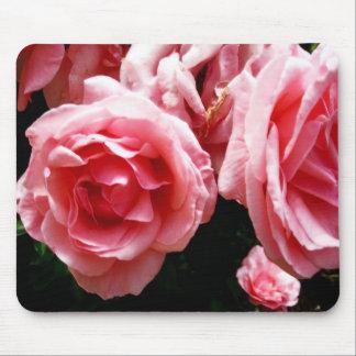Coral Roses Mousepad