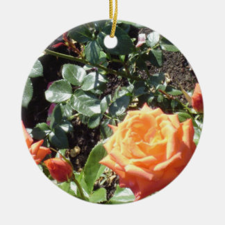 Coral Roses Ornaments