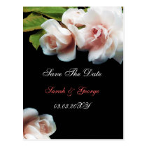coral Roses Wedding Invitations Postcard