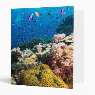 Coral Sea 3 Ring Binder