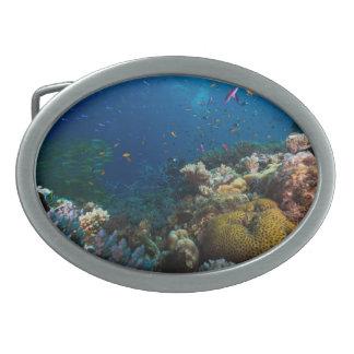 Coral Sea Belt Buckle