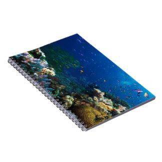Coral Sea Notebook