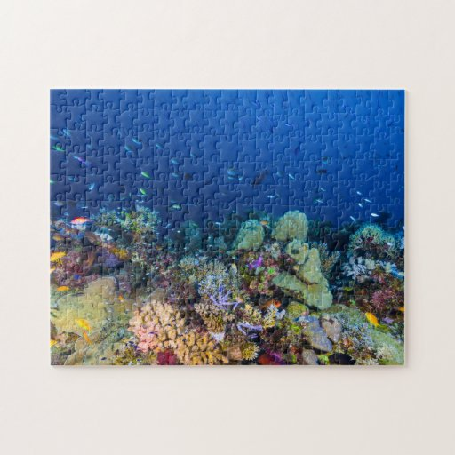 Coral Sea - Tropical Fish & Reef - Jigsaw Puzzle