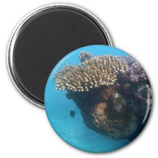 Coral Seascape 2 Inch Round Magnet