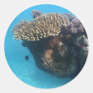 Coral Seascape Classic Round Sticker