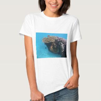 Coral Seascape Tee Shirt