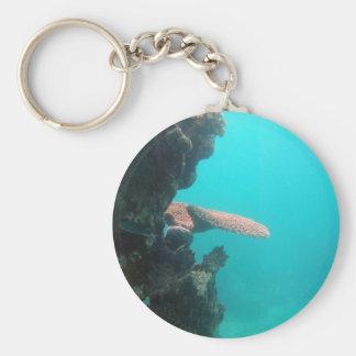 Coral Shelf Basic Round Button Keychain