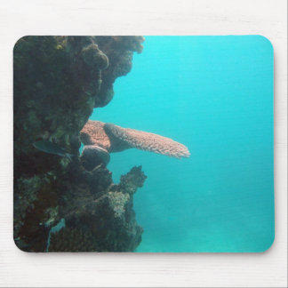 Coral Shelf Mouse Pad