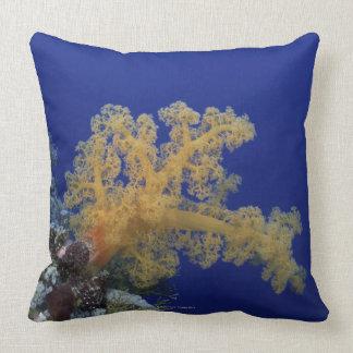 Coral subacuático cojín