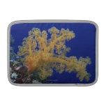 Coral subacuático fundas MacBook