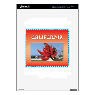 Coral Tree in California iPad 3 Decal