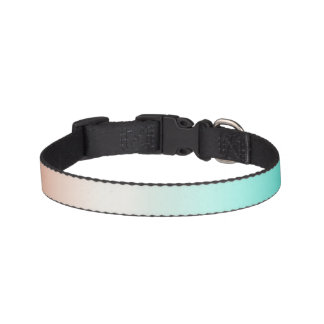 Coral White Turquoise Ombre Pet Collar