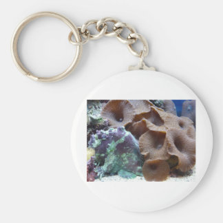 coral with hand fish keychains