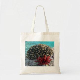 Coral y erizo de mar de Hawaii Bolsas