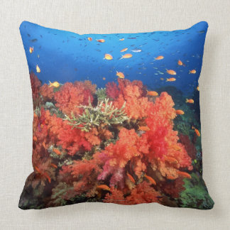 Coral y pescados cojín