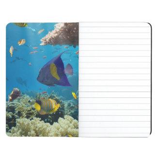 Coral y pescados en el Mar Rojo, Egipto Cuaderno
