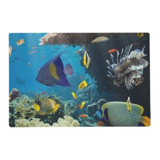 Coral y pescados en el Mar Rojo, Egipto Salvamanteles