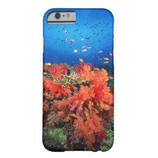 Coral y pescados funda de iPhone 6 barely there