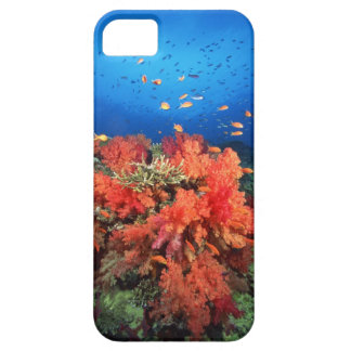 Coral y pescados funda para iPhone 5 barely there