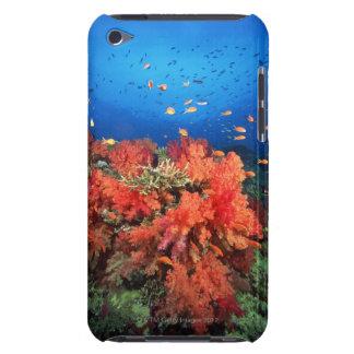 Coral y pescados iPod touch Case-Mate protectores