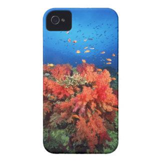 Coral y pescados Case-Mate iPhone 4 funda