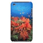 Coral y pescados funda iPod
