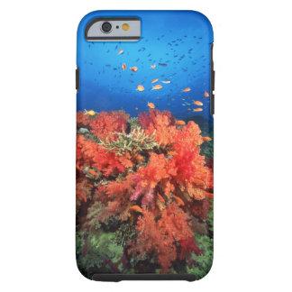 Coral y pescados funda resistente iPhone 6