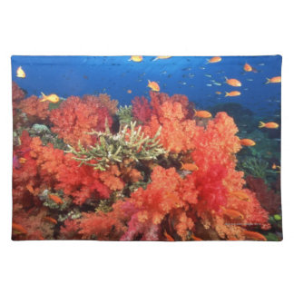 Coral y pescados manteles