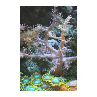 Coral y Zoanthids - el filón Collecti del árbol de Impresión De Lienzo