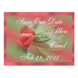 CoralAzaleaBudsSave-the-Date- customize as needed Postcard