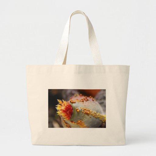 Corales Bolsas De Mano