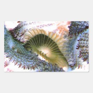 Corales del agua salada con colores invertidos pegatina rectangular